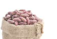 Seeds Of Beans Stock Image