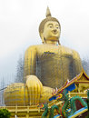 Free The Biggest Buddha Statue Stock Images - 19477234
