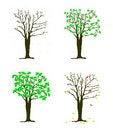 Free Four Seasons Tree Royalty Free Stock Photos - 19478518