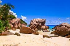 Free Tropical Beach Royalty Free Stock Image - 19474016