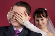 Couple Newlyweds Have Fun Together   Isolated Stock Image