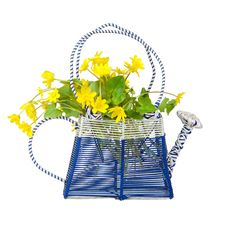 Free Watering With A Bouquet Of Buttercups Royalty Free Stock Images - 19477059