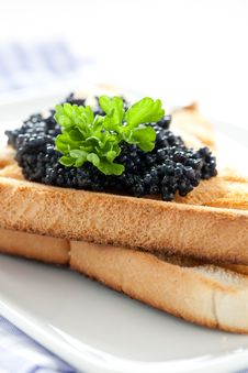 Free Black Caviar On Toast Royalty Free Stock Photography - 19479667