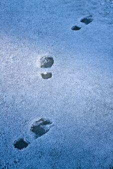 Footprints In The Snow. Royalty Free Stock Image