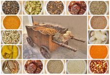 Free Various Spices All Over The World Royalty Free Stock Image - 19481746