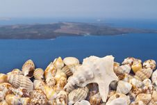 Free Greek Island ,seashells And Oysters Stock Images - 19481804