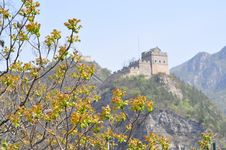 Free View Of Great Wall With Flowers Royalty Free Stock Photo - 19483625