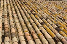 Free Texture Of Old Roof Tiled With Cylindrical Tiles Royalty Free Stock Images - 19484219