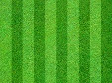 Free Real Green Grass Field Stock Photography - 19484382