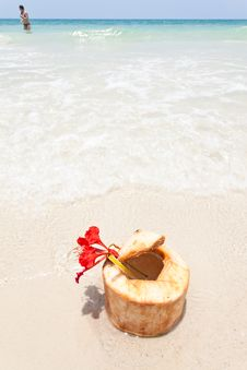 Free Coconut On White Sand Royalty Free Stock Photography - 19487157