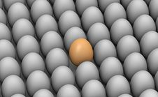 Free Leader Of Eggs Royalty Free Stock Photography - 19487267
