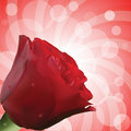 Free Red Rose With Droplets And Circular Background Stock Image - 19495781