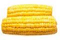 Free Corn-cob Isolated Royalty Free Stock Image - 19497666