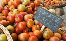Free Organic Tomatoes Royalty Free Stock Images - 19492919