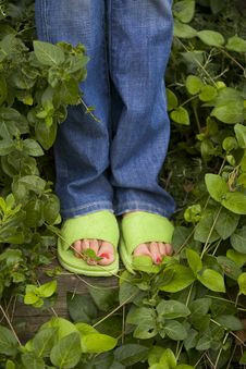 Free Slippers Stock Image - 19493061