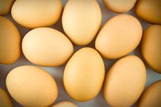 Free Chicken Eggs Royalty Free Stock Image - 19494356