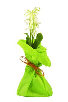 Free Flowers Lily Of The Valley Royalty Free Stock Photos - 19495298