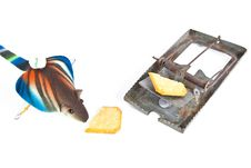 Free Mouse And Trap Old Stock Image - 19495681