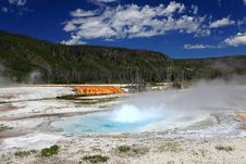 Yellowstone National Park Royalty Free Stock Images