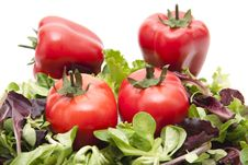 Free Mixed Salad With Tomato Stock Photography - 19496102