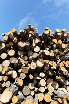 Free Woodpile Royalty Free Stock Images - 19496739