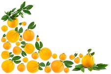 Free Oranges Making A Border Royalty Free Stock Photo - 19496755