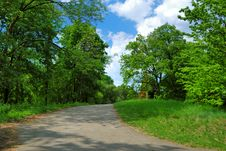 Free Spring Park With Green Trees Stock Image - 19497471