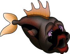 Free Dark Coloured Ground-fish Stock Images - 1950314