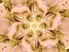 Free White Flowers Kaleidoscope Stock Images - 1951564