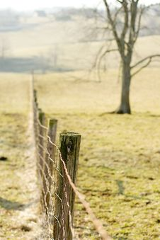 Free Wire Fence Stock Image - 1959601