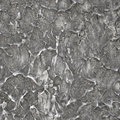 Free Concrete Texture Royalty Free Stock Images - 19507299
