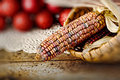 Free Ear Of Indian Corn In Basket Royalty Free Stock Photos - 19509708