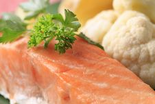 Free Salmon Fillet Royalty Free Stock Image - 19501346