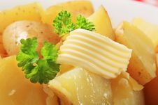 Free Boiled Potatoes Stock Image - 19505091