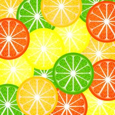 Free Background A Citrus Royalty Free Stock Image - 19505386