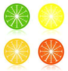 Free Icon A Citrus Stock Image - 19505431