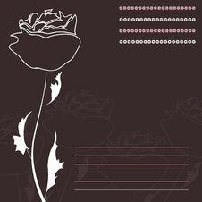 Free Rose Stock Image - 19505441