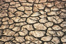 Free Dry Cracked Earth Stock Photography - 19506472