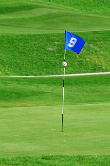 Free Flag On Golf Course Stock Photography - 19508042