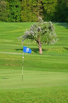 Free Flag On Golf Course Stock Photos - 19508043