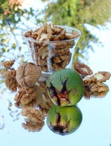 Free Beautiful Still Life Image Of Nuts Stock Photos - 19508473