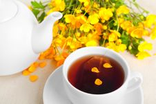 Free Cup Of Tea Stock Photo - 19509140