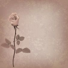 Free Abstract Grunge Floral Background With Rose Royalty Free Stock Photography - 19509297
