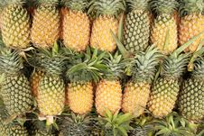 Pile Of Pineapples Royalty Free Stock Photo