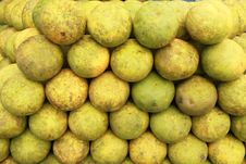 Free Pomelo ,tropical Fruit Stock Images - 19509664