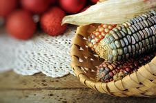 Free Ear Of Indian Corn In Basket Royalty Free Stock Photo - 19509685