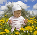 Free Baby Sitting In Meadow With Dandelions Royalty Free Stock Photography - 19513387