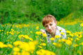 Free Woman On The Grass Royalty Free Stock Images - 19514959