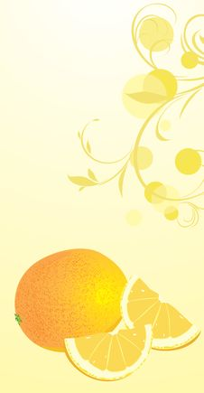 Free Orange On The Floral Background Stock Images - 19512114