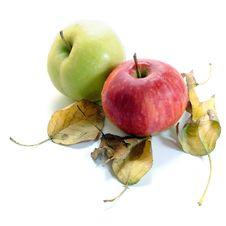 Free Apple Royalty Free Stock Photo - 19512725